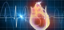 Kardiovaskuläre Erkrankungen